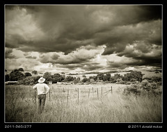 2011-365/277 - (Ma, a storm's a brewin' on the) Horizon (DonMcKee) Tags: ca sky people blackandwhite bw plants cloud tree nature ecology grass architecture clouds fence landscape us blackwhite scenery skies landscaping structures architectural barbedwire infrared don environment environmentalism stormcloud stormclouds ecosystem santaclaracounty project365 calerocountypark dailyshoot securityfencing 3652011 ds688