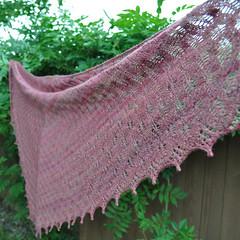 Bitterroot shawl