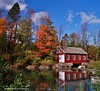 autumn reflections at decew morningstar mill (Rex Montalban Photography) Tags: autumn ontario reflections colours stcatharines stitched decew nonhdr morningstarmill vertorama powerglen decewmorningstarmill rexmontalbanphotography pse9
