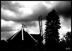 In the sky... ((o.o) MzK = ^.^ =) Tags: sky blackandwhite bw clouds photo photographie noiretblanc gimp ciel editing nuages retouch retouche