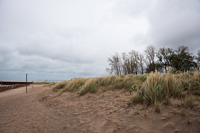 Wind Storm Oct 19 2011-5