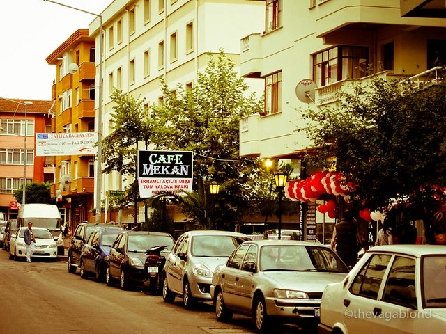Around Yalova.jpg