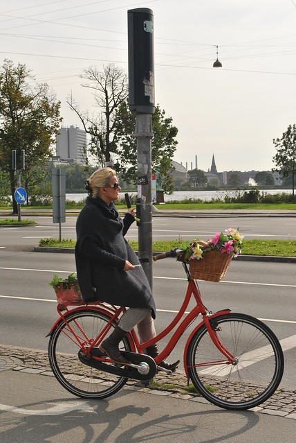 The Copenhagenize Love Handle