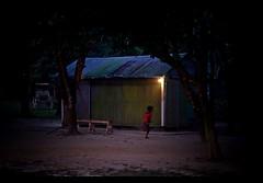 National Park , Gazipur (Asif Adnan Shajal) Tags: life park city light summer photography photo nationalpark asia day photographer low citylife national dhaka bangladesh asif bangla gazipur adnan southasia bangladeshi    saarc  streeting shajal