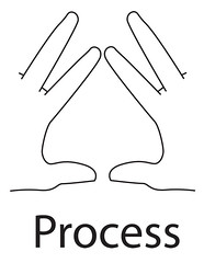 Point of Process