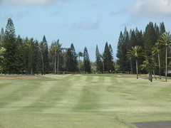 Turtle Bay Colf Course 159