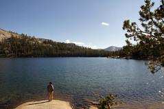 2011-10-15 10-23 Sierra Nevada 339 Yosemite National Park, Tenaya Lake