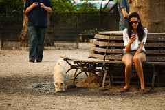 We Are All On Hold/ ...     (mohammadali) Tags: life park street city nyc trip vacation woman dog newyork man fall girl lady canon us waiting streetphotography stranger wait 5d     2011 onhold