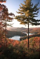 IMG_8858 (lakemontlady) Tags: county fall rabun