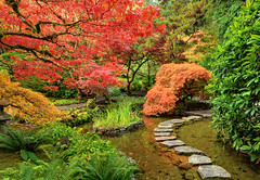 Exercising the Imagination, Butchart Gardens, Victoria, BC (Ireena Eleonora Worthy) Tags: autumn canada colour reflection fall water beautiful garden japanesegarden maple nikon bc path britishcolumbia awesome victoria vancouverisland butchartgardens d700 mygearandme northernstraitsphotography