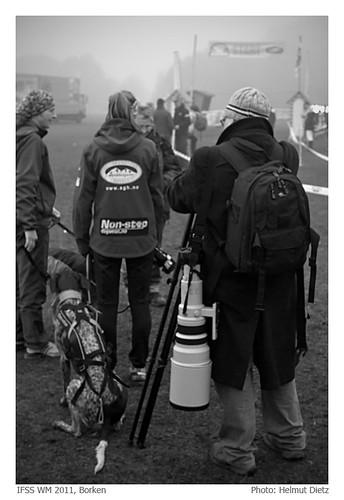 Schlittenhunde Weltmeister in Borken