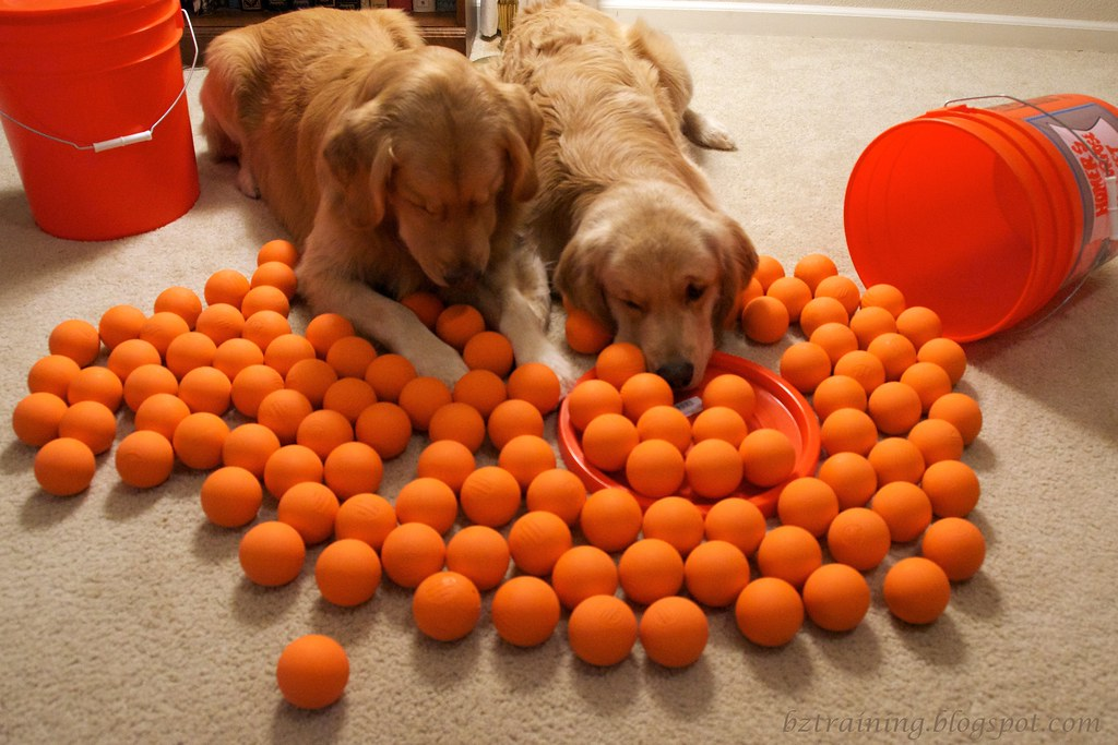 120 Balls on the Floor...