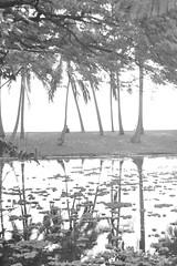 Lagoon B&W