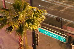 6879004982 8a21ce11fc m Suicide by bus in Las Vegas