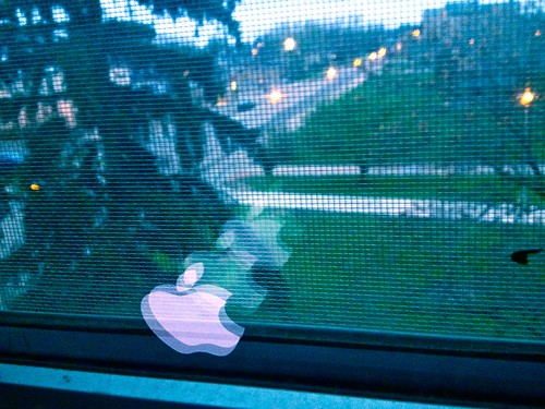 Apple Reflection