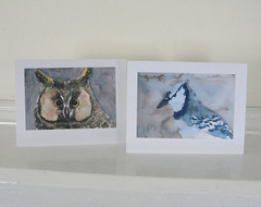 Owl and blue jay cards (mbrichmond) Tags: bluejay chickadee kingfisher owl flicker vireo yellowbirds birdprints assortedbirds maryrichmonddesign birdcards naturecards songbirdcards frommywatercolors