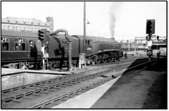 Scottish Steam at Perth - 60024 (trafalgar45682) Tags: station glasgow scottish steam aberdeen perth kingfisher express sixties 60024