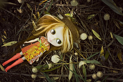In a Fairy Ring