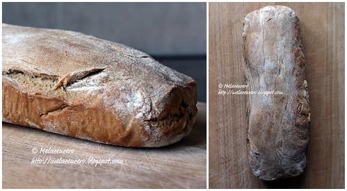 """Pane: il coccodrillo """"buono"""""""