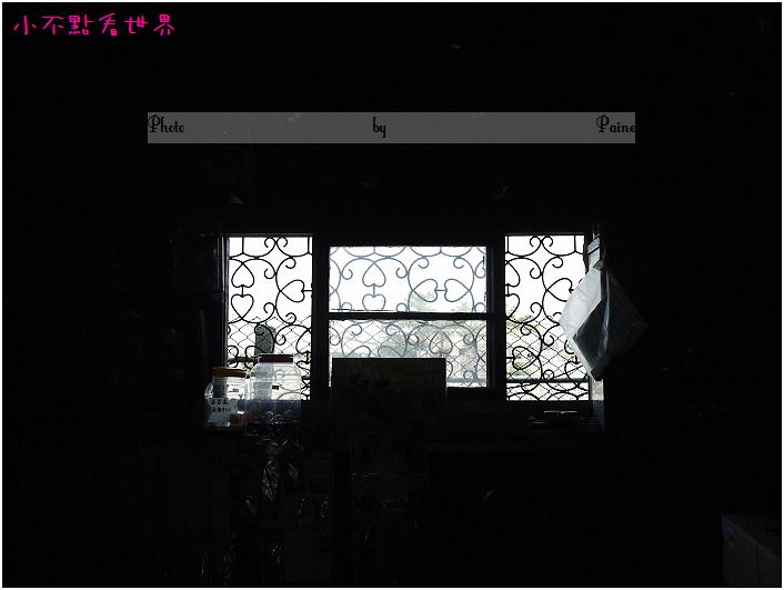 新港頂菜園 (41).JPG