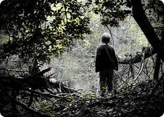 lost. (Hammonton Photography) Tags: children lost kid woods nikon solitude alone child lonesome d5000 jessicadigiacomo hammontonphotography