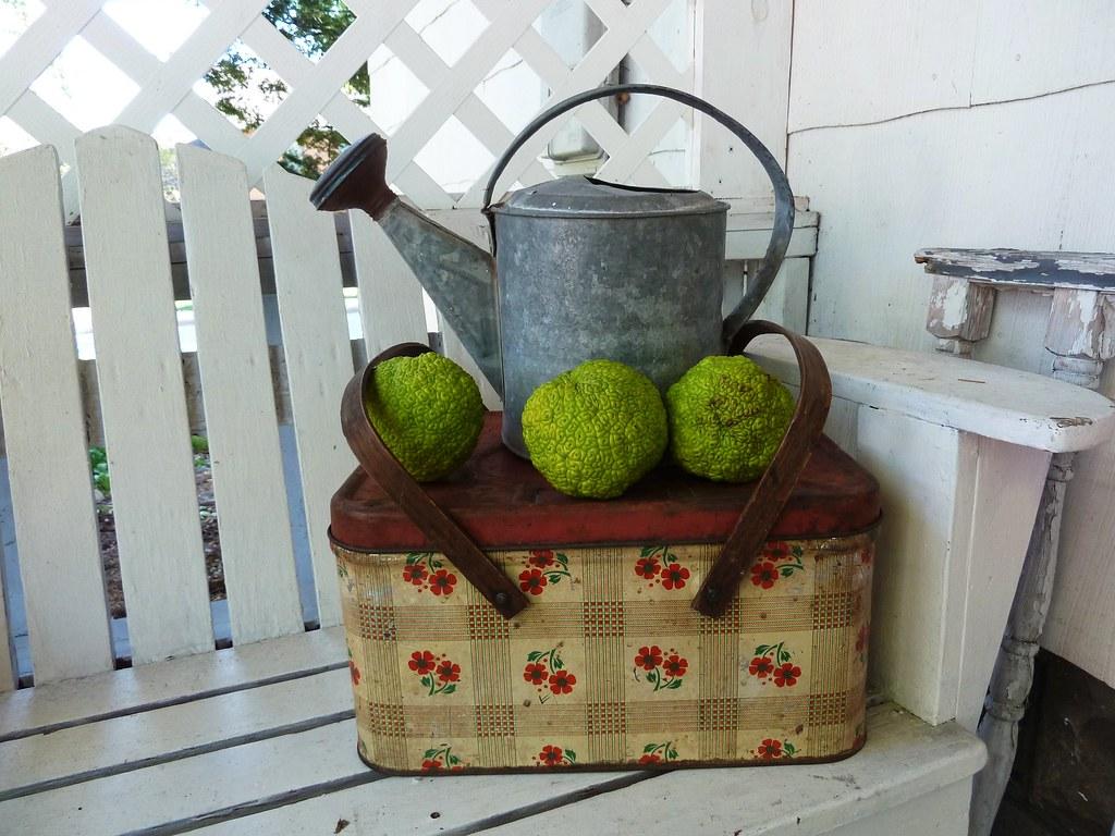 Vintage Picnic Basket-A Garage Sale Find!