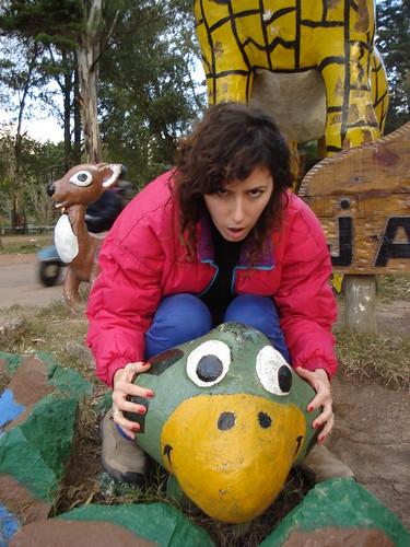 RIDING la tortuga