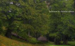 Belabarze (christian&alicia) Tags: sky landscape nikon huesca sigma natura aragon 18200 fondo hdr pirineos pirineus linza pyrinees zuriza d90 christianalicia belabarze