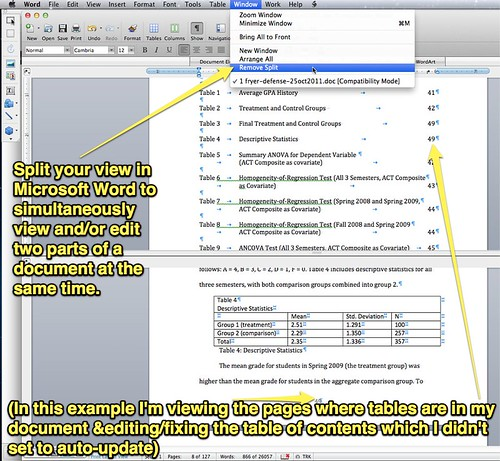 Split Your View in Microsoft Word