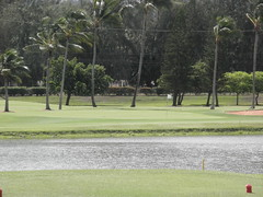 Turtle Bay Colf Course 143