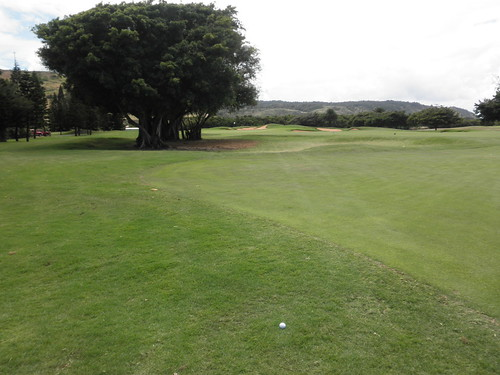 Turtle Bay Colf Course 235