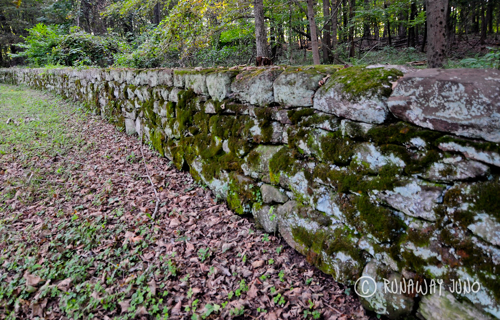 Stone wall on The Olmsted Carriage Road