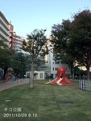 朝散歩(2011/10/29): タコ公園