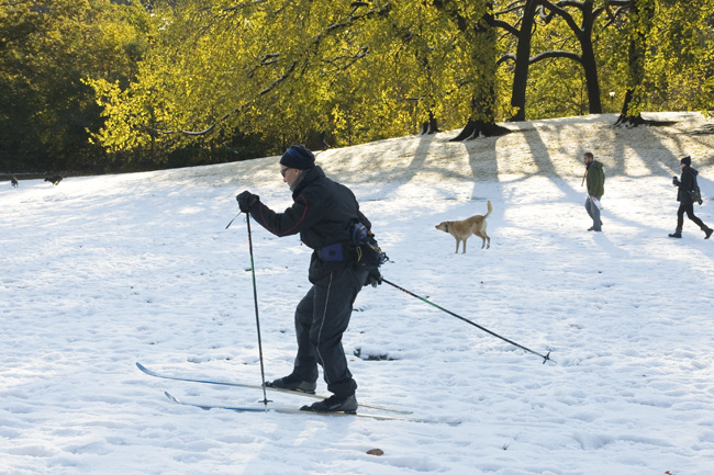 Skiing, Prospect Park, Brooklyn