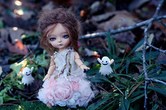 evening apparitions (marshmallowmosaic) Tags: halloween girl rose garden dress princess vampire tan sprite mimi mohair miel ghosts bjd soom mystic baklava gumdrops apparitions latidoll lati