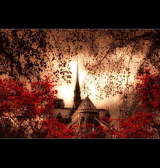 Fly Over Paris III (Chariots_of_Artists) Tags: trees red paris france building cathedral dam notre workship chariotsofartists flickrsfinestimages3