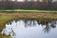 The 4th Hole at Woodfield Captain's Club (Roni Bear) Tags: trees reflection fall nature water grass weather forest golf nikon michigan golfcourse waterreflection wooded marshgrass nikond80 nikon18135mmf3556g puremichigan ronibear woodfieldcaptainsclub