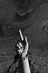 the puppet series. #9 the finger (joe.laut) Tags: bw beach blackwhite october onthebeach surreal sw concept schwarzweiss 2011 falckenstein incoloro joelaut thepuppetseries thedummyseries
