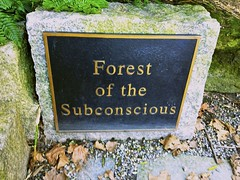 Forest of the Subconscious by nme421, on Flickr