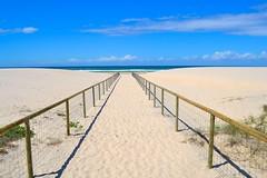 Gold Coast Beach  (Leafypages) Tags: ocean blue sky beach gold coast sand path australia queensland coolangatta goldcoast