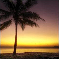 Watching the Sunrise in Palm Cove, Cairns, Far North Queensland, Australia :: HDR (:: Artie | Photography ::) Tags: sea mountain tree beach nature silhouette photoshop sunrise canon coconut cove tripod australia wideangle palm tropical cairns ef 1740mm hdr cs3 palmcove 3xp farnorthqueensland f4l photomatix tonemapping tonemap 5dmarkii 5dm2