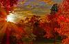 Fall Sunset with a storm on the way (wbirt1) Tags: autumn sunset fall sonora fallcolor hdr tuolumne micarttttworldphotographyawards micartttt michaelchee billbirtwhistle