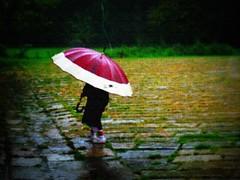Italia - Milano (anton.it) Tags: texture colors child milano pioggia ombrello bimba canong10 platinumpeaceaward antonit flickrstruereflection1 flickrstruereflection2 flickrstruereflection3 parcoboscoincittà