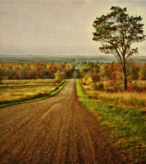 Come, Walk a Country Road With Me...................... (LynnF1024) Tags: morning autumn trees fall nature wisconsin rural landscape countryside raw day cloudy picnik countryroad nikond90 bayfieldcounty afsdxzoomnikkor1855mmf3556gedii magicunicornverybest lynnf1024