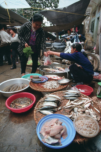 Market, Vietnam. Photo by Dominyk Lever, 2004