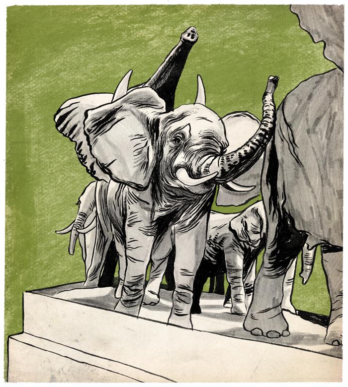 elephants_sm