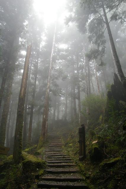20111019-20與家人同遊太平山 (注意,圖多)