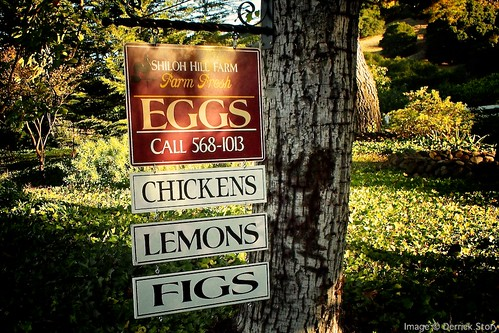 Eggs Chickens Lemons Figs