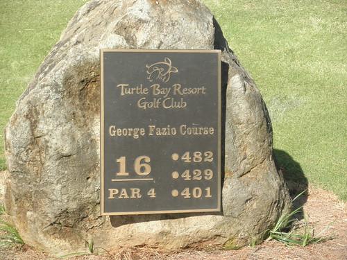 Turtle Bay Colf Course 110