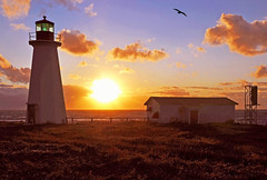 DGJ_4612 - Enrage Point Lighthouse (last one) (archer10 (Dennis)) Tags: lighthouse canada island nikon novascotia free capebreton dennis jarvis d300 iamcanadian cheticamp 18200vr freepicture 70300mmvr dennisjarvis archer10 dennisgjarvis wbnawcnns enragepoint